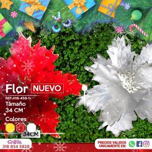 Poinsettia H16-458-1